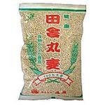 恒食 健康田舎丸麦 850g
