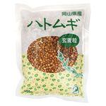 TAC21 ハトムギ 玄麦粒渋皮付 300g