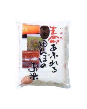 小野寺 特別栽培 生命あふれる田んぼのお米(ひとめぼれ 白米) 4kg